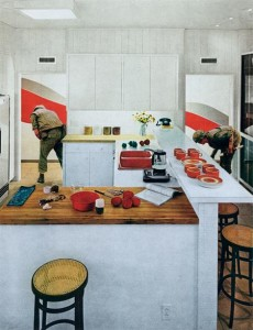 42355-martha-rosler-Red-Stripe-Kitchen-630px